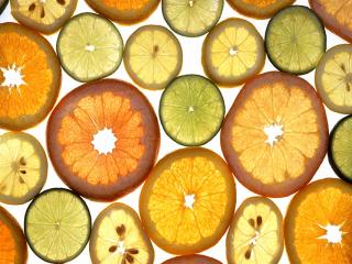 Citrusok(1024x768).png (citrusféle, citrom, narancs, )