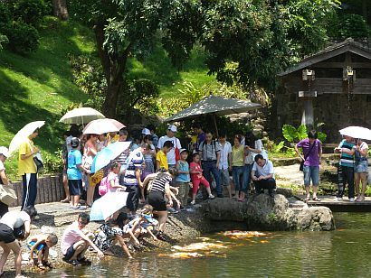 park14 (pinghong blog, )