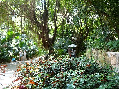 park26 (pinghong blog)