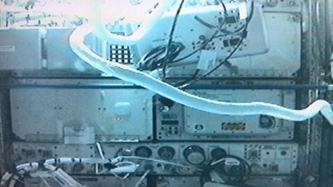 ezt látta az űrrobot (űrrobot)