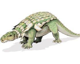 nodosaurus (nodosaurus, dinoszaurusz)