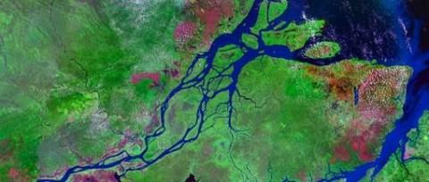 Amazónia (amazónia)