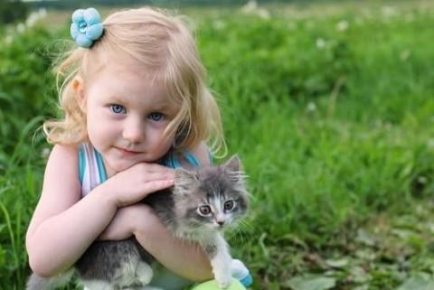 Kislány cicával (macska, gyerek, kislány, )