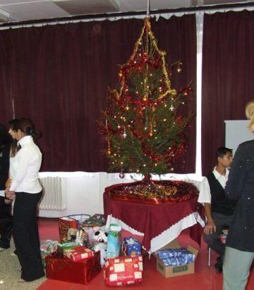 A velencei diákotthon karácsonyfája (velencei karácsonyfa)