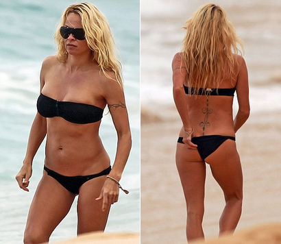 Pamela Anderson (pamela anderson, )