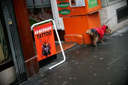 kutya pisil (kutya, ürülék, tattoo, )