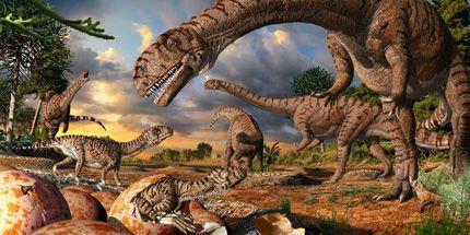 Massospondylus illusztráció (massospondylus, illusztráció, dinoszaurusz, )