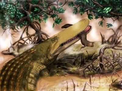 Aegisuchus witmeri (Aegisuchus witmeri, krokodil, őslény, )
