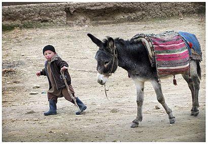 Fusi Csaba Afganisztánban_01 (fusi csaba, afganisztán, )