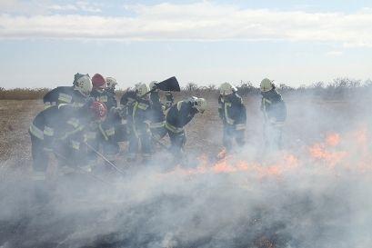 Dolgoznak a tűzoltók Csórnál a réten (tűzoltók)