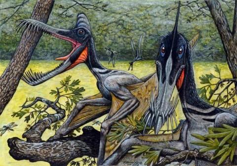 Guidraco venator illusztráció (Guidraco venator, pteroszaurusz, )