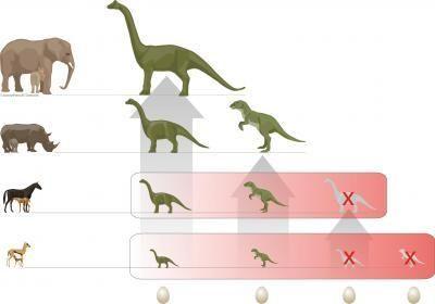 Dinoszaurusz folyamatábra (dinoszaurusz, )