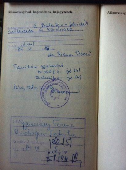 Gyurcsány indexe ()