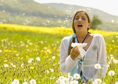 allergia ()