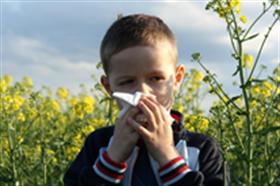 allergia(280x186).png (allergia, )