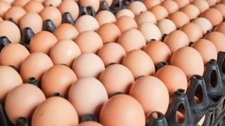 A nagyok már most is kilóra veszik a tojást (tojás,)