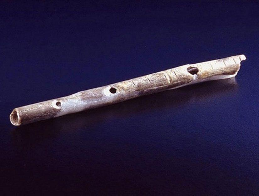 Csontfuvola (csontfuvola, fuvola, csont, )