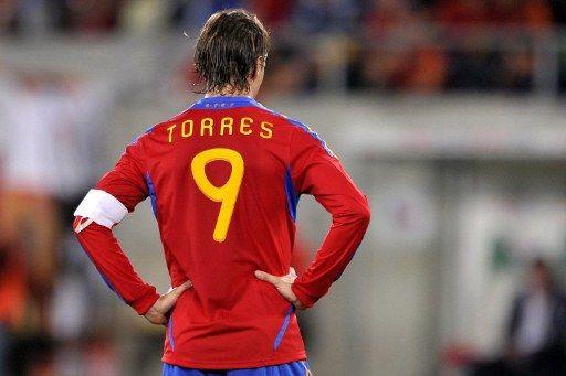 Fernando Torres (Array)
