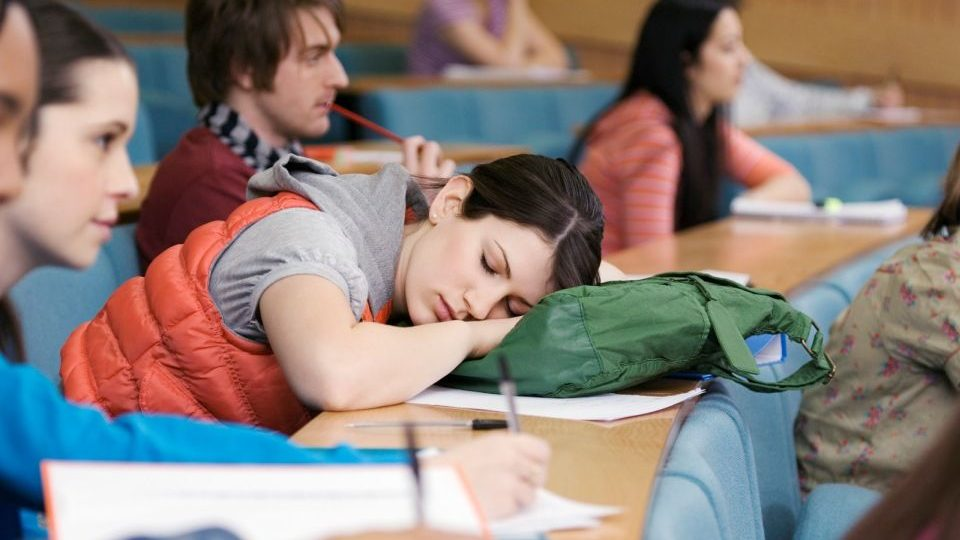 alvó-diák (alvás, )