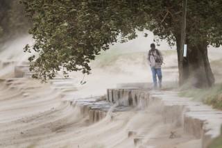 homokvihar (homokvihar)