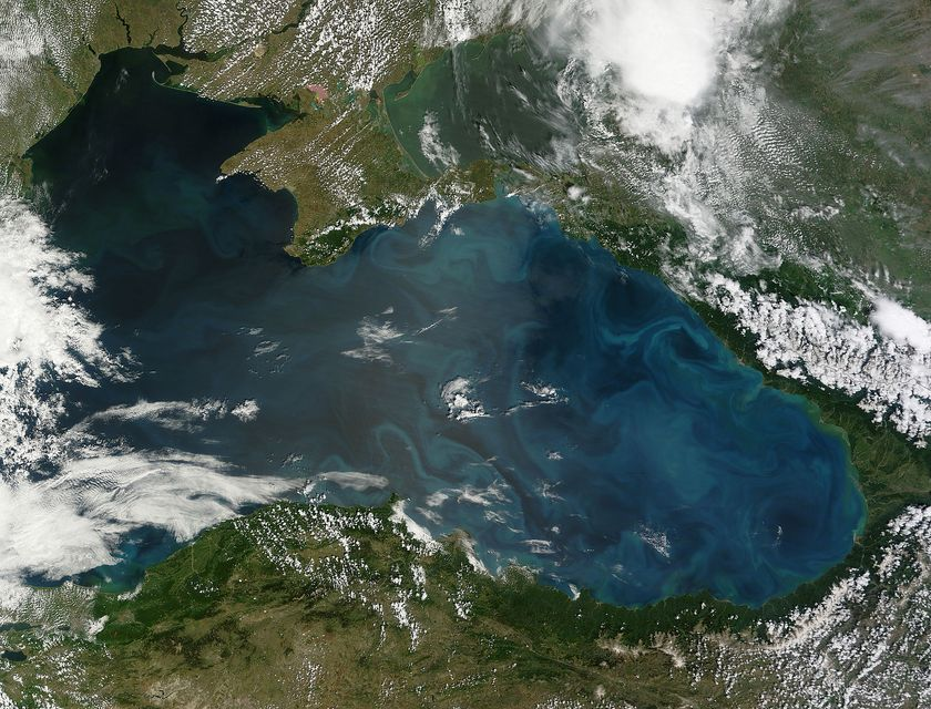 A Fekete-tenger új színe (fekete-tenger, fitoplankton, )