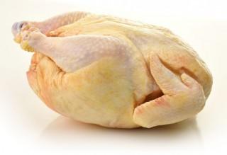 Csirke (csirke, )