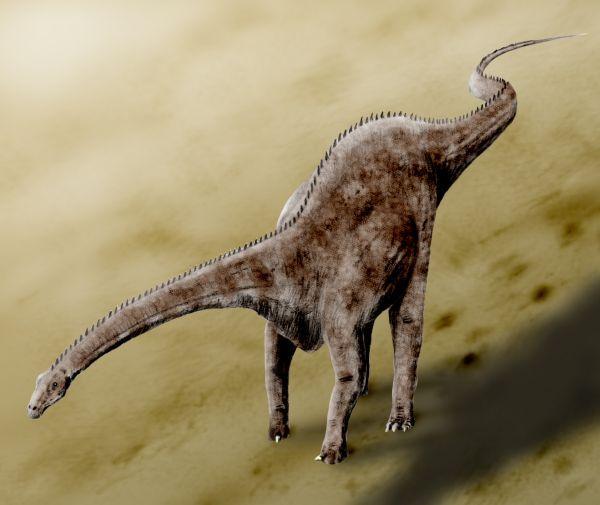 Diplodocus (diplodocus, dinoszaurusz, )