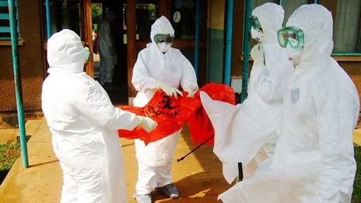 ebola (ebola, )