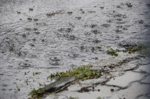 eső (időjárás jelentés, )