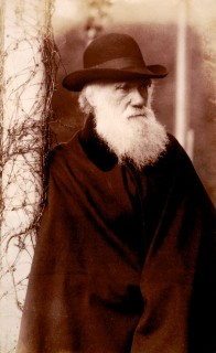Charles Darwin ( Charles Darwin)