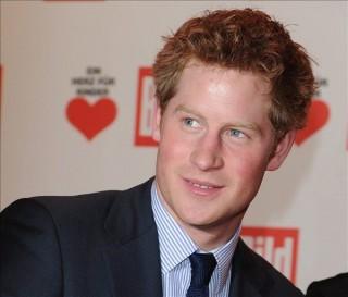 Harry herceg (harry herceg, )