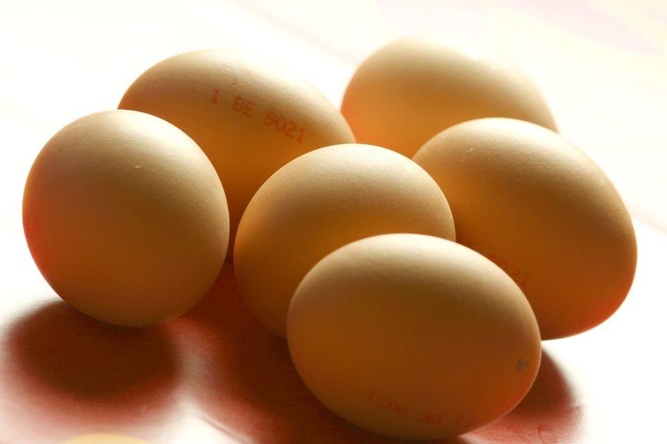 Tojás (tojás)