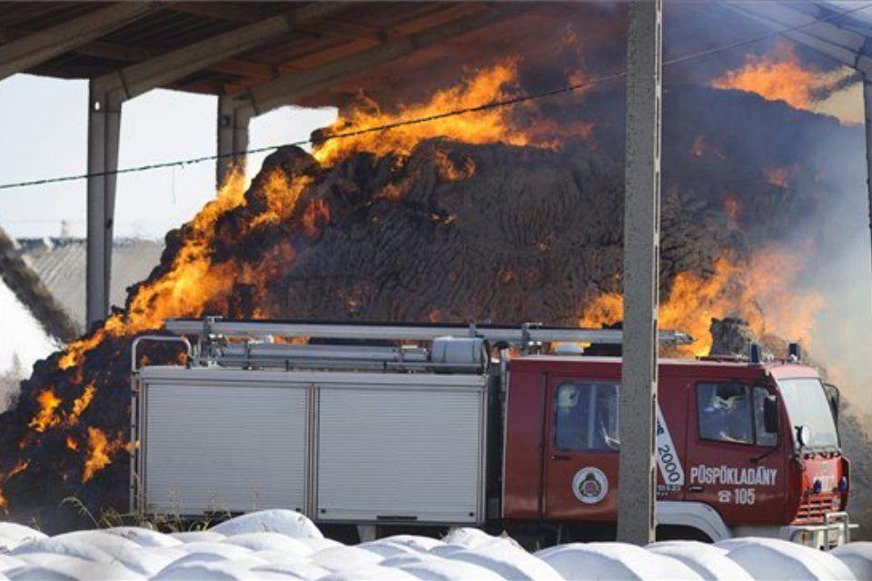 tűz-szalma (ingyenes, )