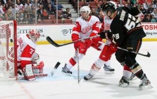 NHL(430x286)(1).jpg (NHL)