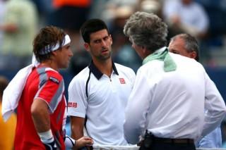 Novak-Djokovic-David-Ferrer (Novak Djokovic, David Ferrer)