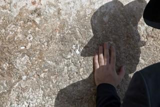 Zsidosag(210x140)(2).jpg (zsidóság, )