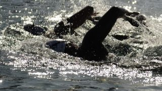 nyíltvízi úszás (nyíltvízi úszás, )