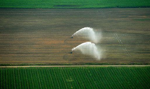 öntözés (öntözés, termőföld, kukorica, öntözőrendszer)