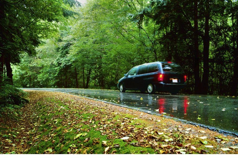 vizes út (nedves út, ősz, )