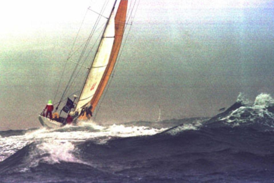 fa nándor hajója (fa nándor, )