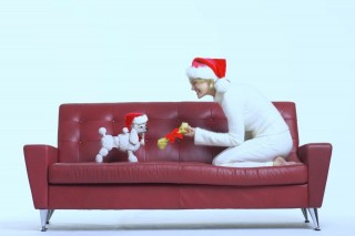 kutya (karácsonyi kutya)