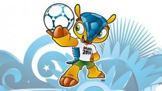 Fuleco (fuleco, kabalaállat, kabalafigura, brazília 2014, labdarúgó vb 2014, labdarúgó világbajnokság 2014)