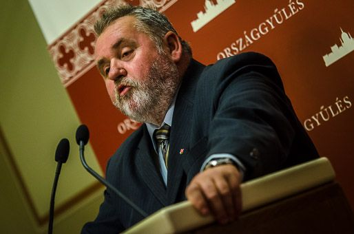 Gőgös Zoltán, Parlament (parlament)