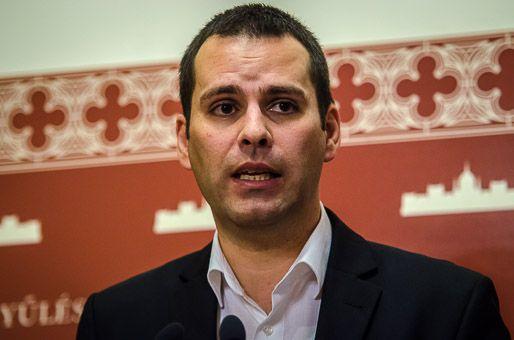 Molnár Csaba, Parlament (Parlament)