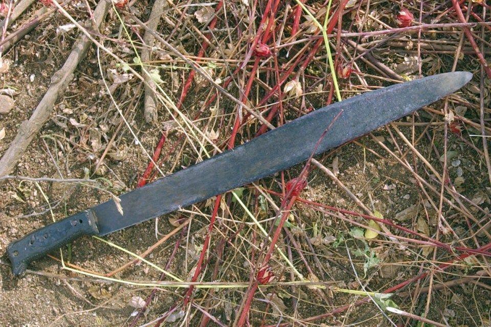 bozótvágó (machete)