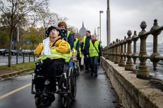 fogyatékkal élők (fogyatékkal élők, )