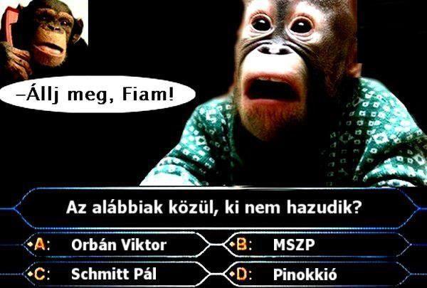 mém (mém)