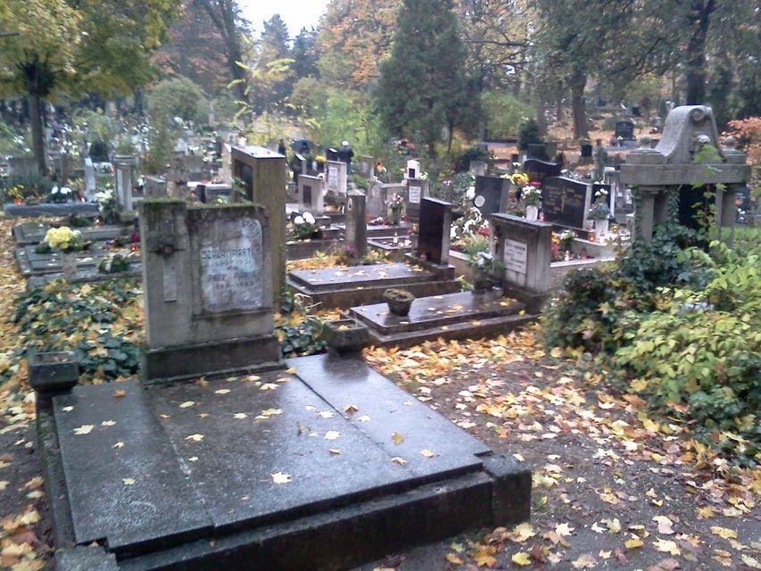 temető Győr (temető Győr)