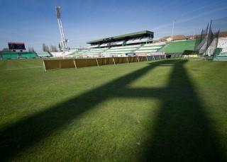 Albert Stadion (albert stadion, )