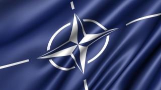NATO (nato, )